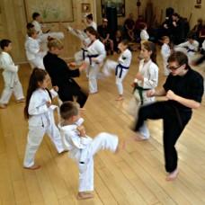 Dojo classes – 2 Family members
