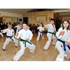 Dojo classes – 3 or more family members